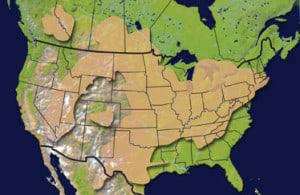 Distribution of the St. Peter Sandstone and its equivalents in North America